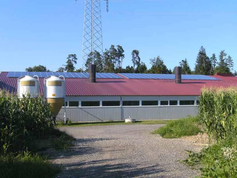 90 KWp Dachanlage, Ferkelanlage, Leibnitz1